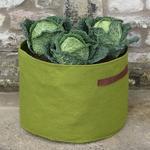 Vigoroot Vegetable Planter