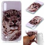 Animal Series Patterned IMD TPU Case for Samsung Galaxy M10/A10 - Leopard