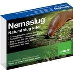 (40 sqm) Nemaslug Natural Slug Killer   Organic Slug Control