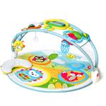 Baby Gym Baby Gym price comparison Skip Hop Explore & More