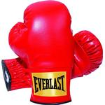 Gloves - Synthetic Everlast Youth Boxing Gloves