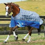 Blankets - Memory Foam Weatherbeeta Comfitec Premier Free Standard Neck