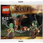 Lego Hobbit Lego The Hobbit Mirkwood Elf Guard 30212