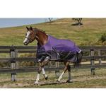 Fleece Blankets Riding Weatherbeeta Comfitec Plus Dynamic Standard Neck