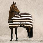 Fleece Blankets Riding Horseware Rambo Deluxe