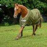 Rain Blankets Riding Bucas Freedom Twill
