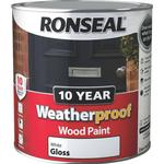 White gloss paint Paint Ronseal 10 Year Weatherproof Wood Paint White 2.5L