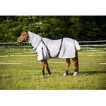 175cm - Blankets Norton Combo