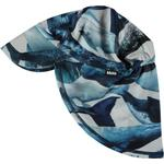 Blue - Bucket Hats Children's Clothing Molo Nando - Whales (7S19Y301 4783)