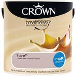 Paint Crown Breatheasy Wall Paint, Ceiling Paint Grey 2.5L
