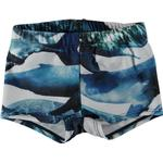 Polyamid - Swim Shorts Children's Clothing Molo Nansen - Whales (8S19P305 4783)