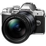 1/125 sec Digital Cameras Olympus OM-D E-M10 Mark III + ED 12-200mm 3.5-6.3