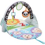 Cheap Baby Gyms Fisher Price 2 in 1 Flip & Fun Activity Gym