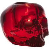 Candle Holders Kosta Boda Still Life Skull 11.5cm Candle holder