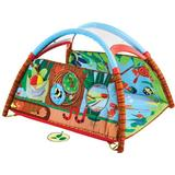 Baby Gyms on sale Tiny Love Gymini Developlace