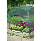 Mini Greenhouses price comparison Nature Pop-up 1m² Stainless steel Plastic