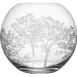 Decorative Items Orrefors Organic 20.5cm