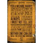GB Eye Harry Potter Quotes Maxi 61x91.5cm Poster