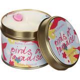 Interior Details Bomb Cosmetics Aroma Candle Birds of Paradise