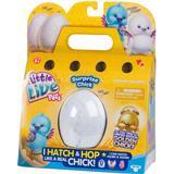 Interactive Pets Moose Little Live Pets Surprise Chick Toy