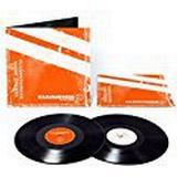 Vinyl Records Rammstein - REISE, REISE [VINYL]