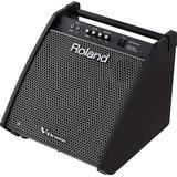 Drum Amplifiers Roland PM-200