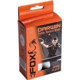 Table Tennis Balls Fox Darwin 1 Star 6-pack