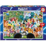 Educa The Marvellous World of Disney 2 1000 Pieces