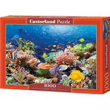Castorland Coral Reef Fishes 1000 Pieces