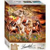 Step Puzzle Find 12 Horses 1000 Pieces