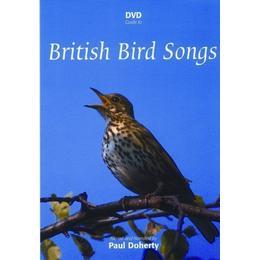 DVD Guide to British Bird Songs