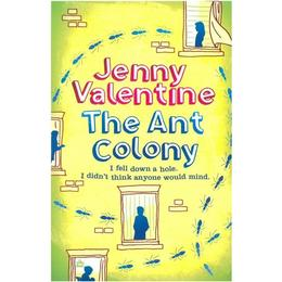The Ant Colony: I fell down a hole. I didn't think anyone would mind
