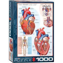 Eurographics The Heart 1000 Pieces