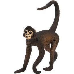 Safari Spider Monkey 291629