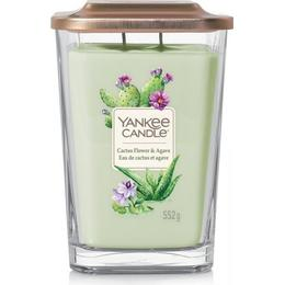 Yankee Candle Cactus Flower & Agave Large Scented Candles