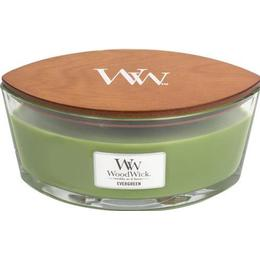 Woodwick Evergreen Ellipse Scented Candles