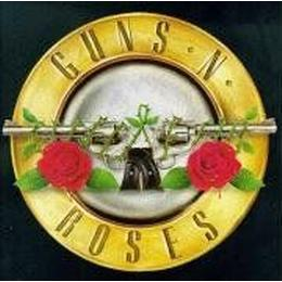 "Watch You Bleed: The Saga of ""Guns n' Roses"""