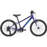 Bikes on sale Cannondale Quick 20 2020 Kids