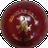 Kookaburra Paceball 142g