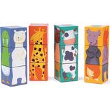 Djeco Color Animal Cubes