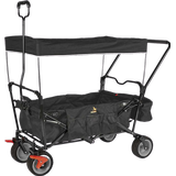 Kids Wagons Pinolino Paxi DLX Comfort