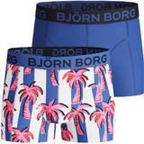 Björn Borg Boy's Palmstripe Glow Shorts 2-pack - Ultramarine (2111-1170_72841)