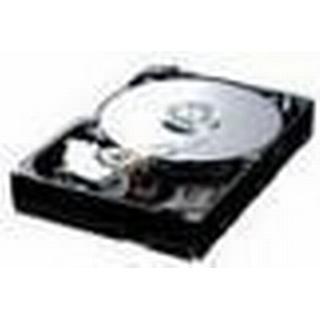 IBM 42D0410 300GB