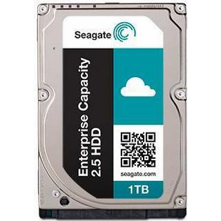 Seagate Enterprise Capacity ST1000NX0363 1TB