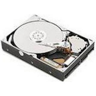 IBM 81Y9731 1TB