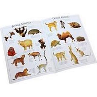 Animal Ultimate Sticker Book (Ultimate Stickers)