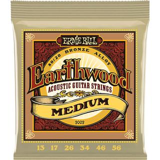 Ernie Ball Earthwood Medium