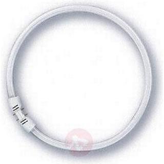 Osram Lumilux T5 FC Fluorescent Lamp 55W 2GX13 840