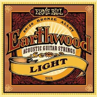Ernie Ball P02004