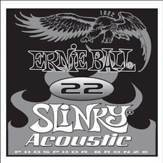 Ernie Ball P01822